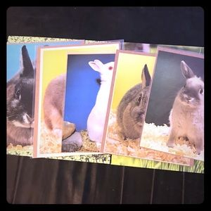 Lot of 5 vintage bunny pictures